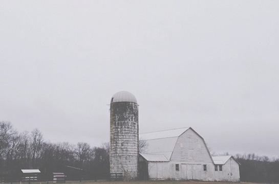 vscocam barn copy