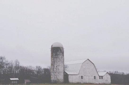 vscocam barn copy